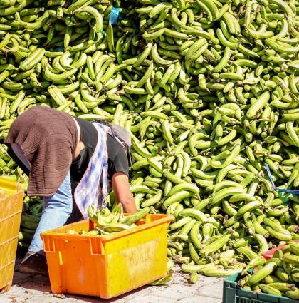Le marché de Saquisili