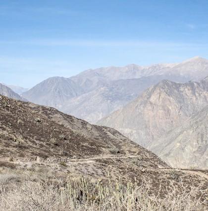 Canyon de Colca, accroche toi !